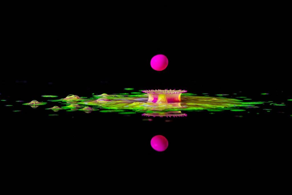 Splash-promo-2