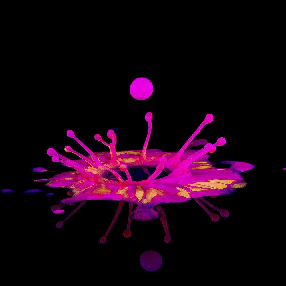 Splash-promo-4